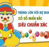 du-doan-xo-so-mien-bac-24-3_2-555x290